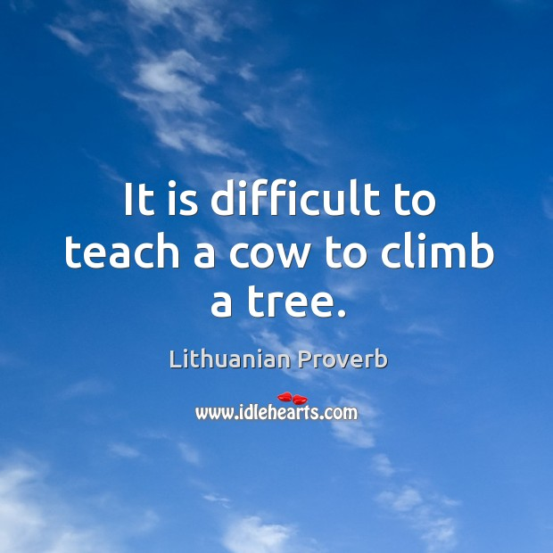 It is difficult to teach a cow to climb a tree. Lithuanian Proverbs Image