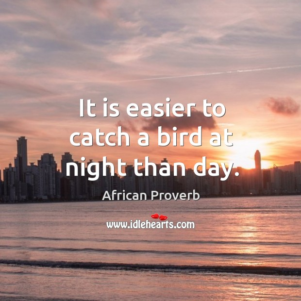 Image, It is easier to catch a bird at night than day.