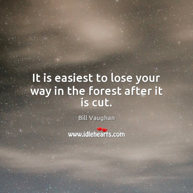 It is easiest to lose your way in the forest after it is cut. Image