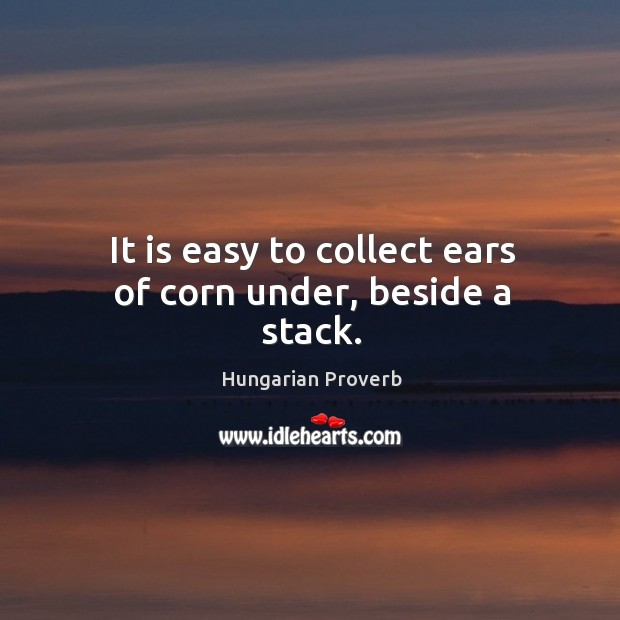 It is easy to collect ears of corn under, beside a stack. Image