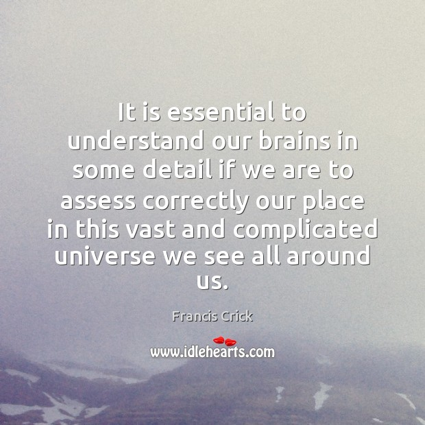Image, It is essential to understand our brains in some detail if we