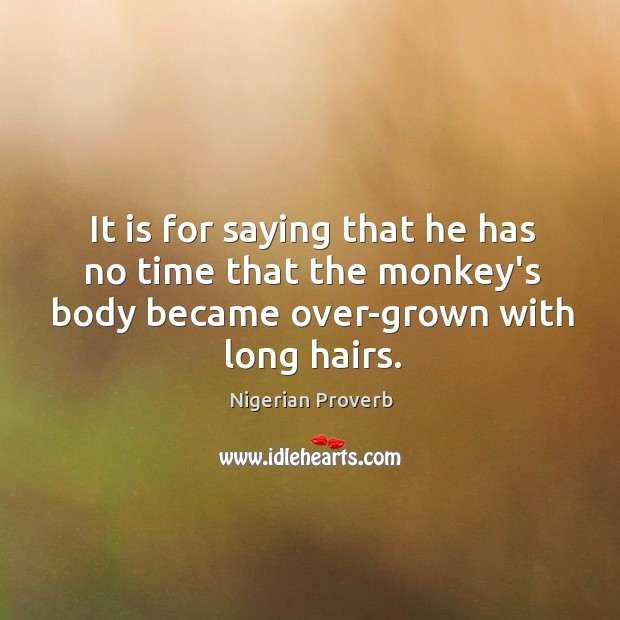 It is for saying that he has no time that the monkey's body became over-grown with long hairs. Nigerian Proverbs Image