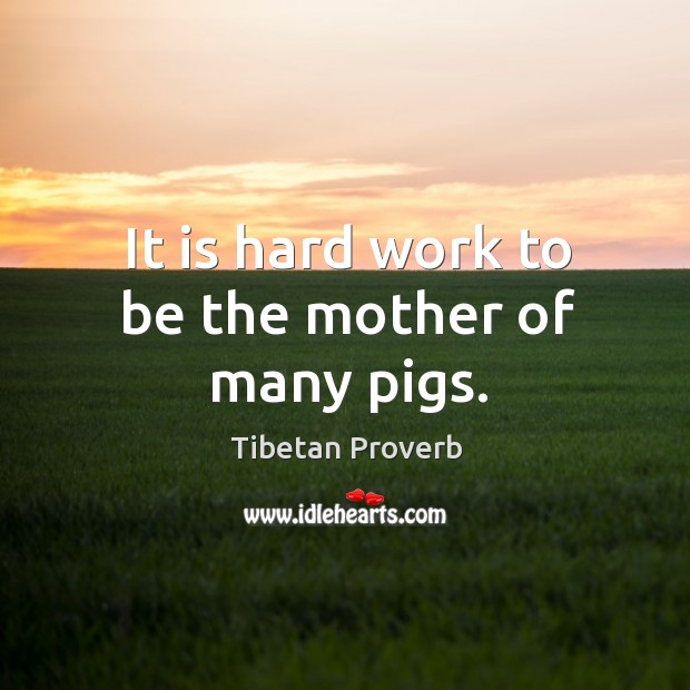 It is hard work to be the mother of many pigs. Tibetan Proverbs Image