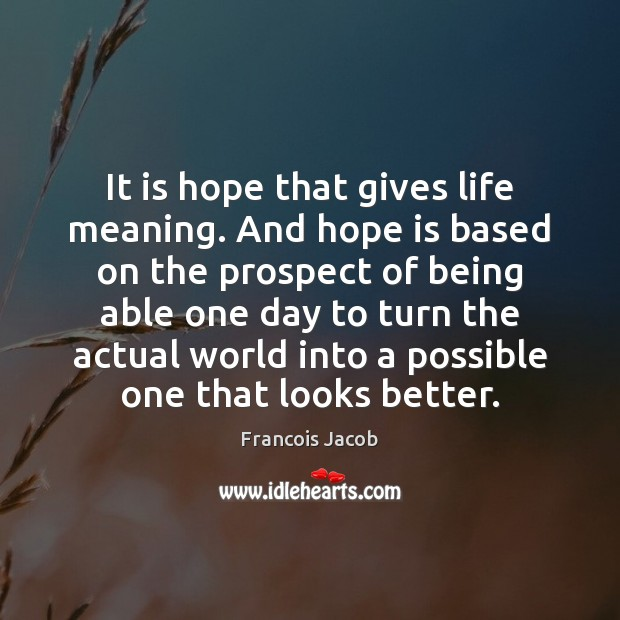 Image, It is hope that gives life meaning. And hope is based on