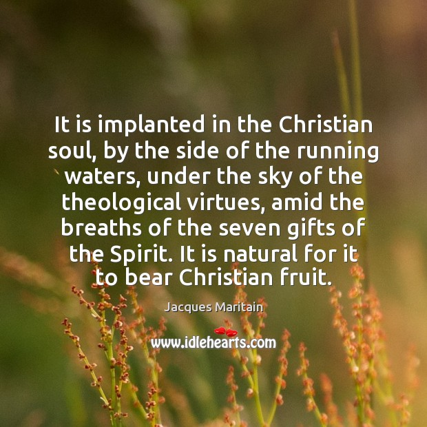 Image, It is implanted in the Christian soul, by the side of the