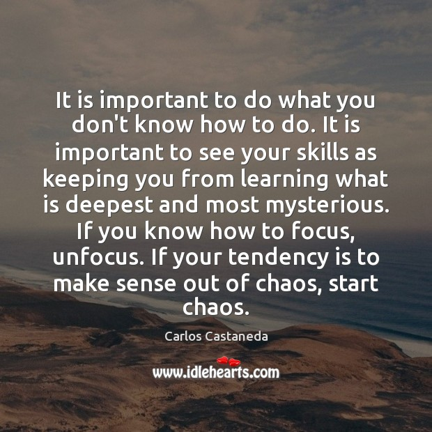 It is important to do what you don't know how to do. Image