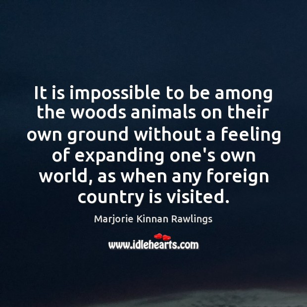 It is impossible to be among the woods animals on their own Marjorie Kinnan Rawlings Picture Quote