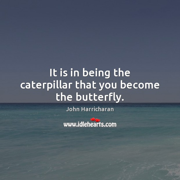 Image, It is in being the caterpillar that you become the butterfly.