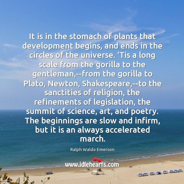 It is in the stomach of plants that development begins, and ends Image