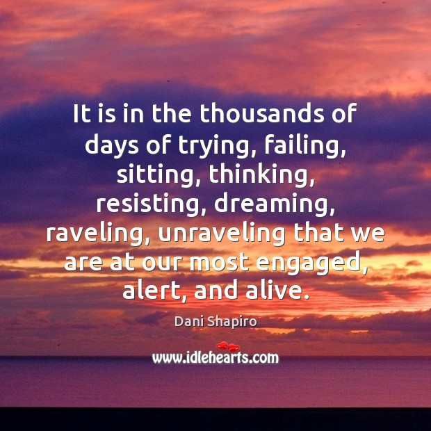 It is in the thousands of days of trying, failing, sitting, thinking, Dani Shapiro Picture Quote
