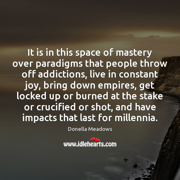 It is in this space of mastery over paradigms that people throw Donella Meadows Picture Quote