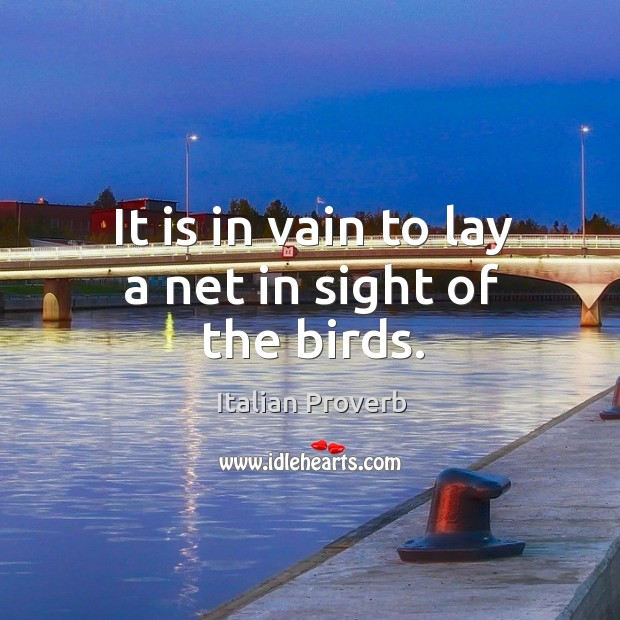 It is in vain to lay a net in sight of the birds. Image