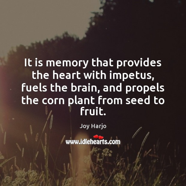 Joy Harjo Picture Quote image saying: It is memory that provides the heart with impetus, fuels the brain,