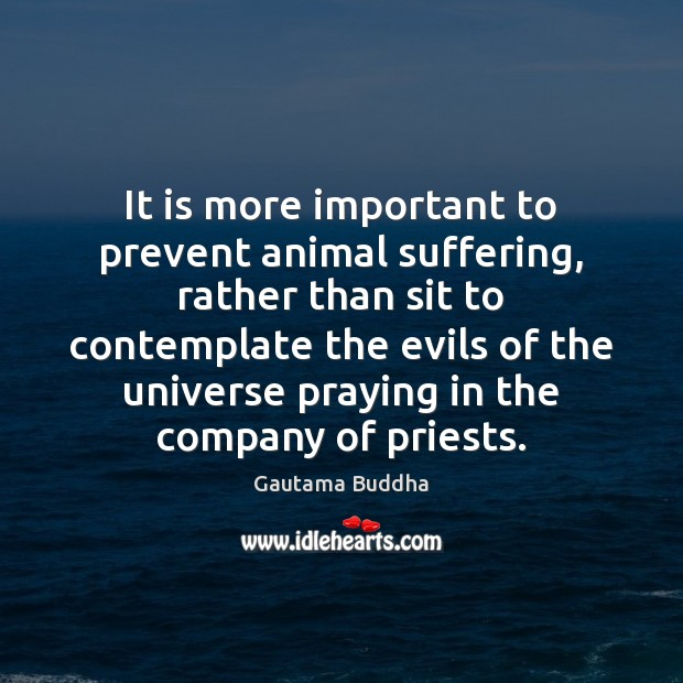 Image, It is more important to prevent animal suffering, rather than sit to