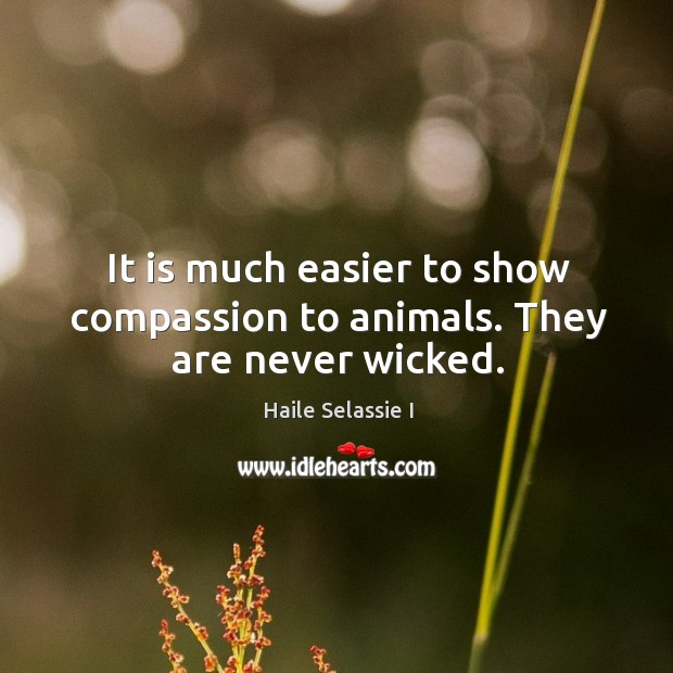 It is much easier to show compassion to animals. They are never wicked. Image