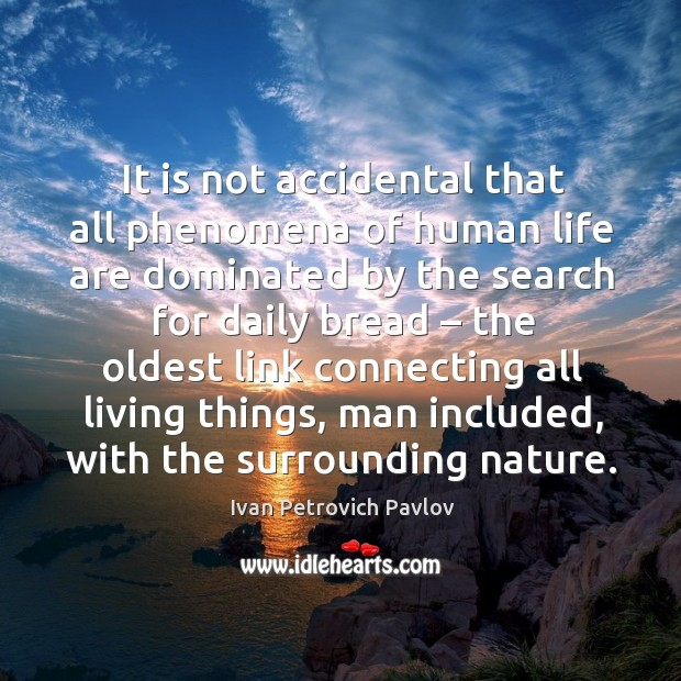 It is not accidental that all phenomena of human life are dominated by the search for daily bread Ivan Petrovich Pavlov Picture Quote