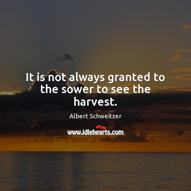 It is not always granted to the sower to see the harvest. Albert Schweitzer Picture Quote