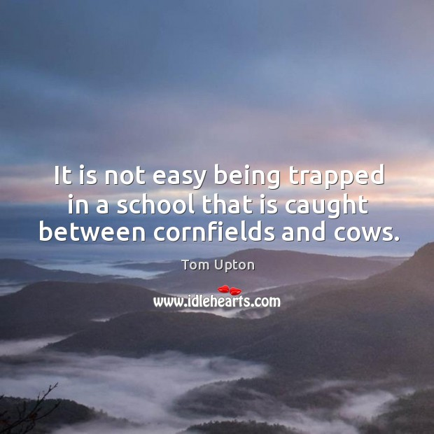 It is not easy being trapped in a school that is caught between cornfields and cows. Tom Upton Picture Quote