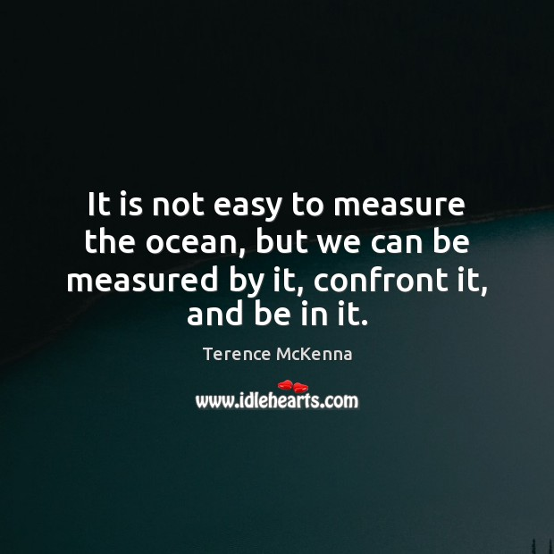 It is not easy to measure the ocean, but we can be Terence McKenna Picture Quote