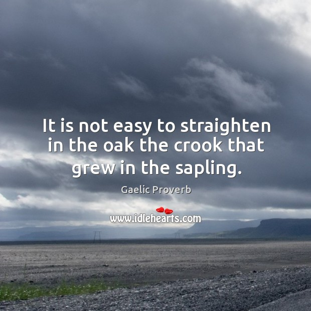 It is not easy to straighten in the oak the crook that grew in the sapling. Gaelic Proverbs Image