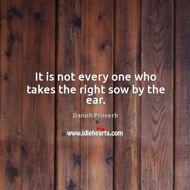 Image, It is not every one who takes the right sow by the ear.