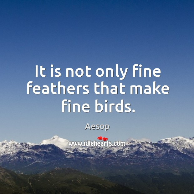 Image, It is not only fine feathers that make fine birds.