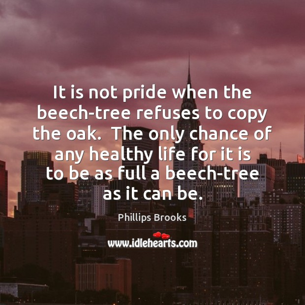 It is not pride when the beech-tree refuses to copy the oak. Phillips Brooks Picture Quote