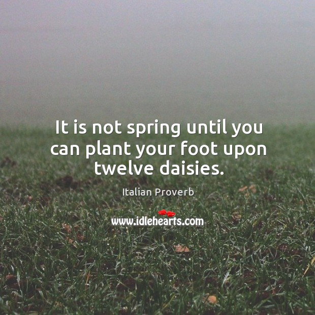 Image about It is not spring until you can plant your foot upon twelve daisies.