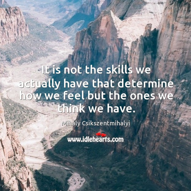 Image, It is not the skills we actually have that determine how we