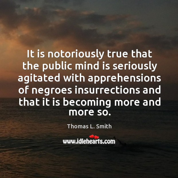 It is notoriously true that the public mind is seriously agitated with apprehensions of negroes Image