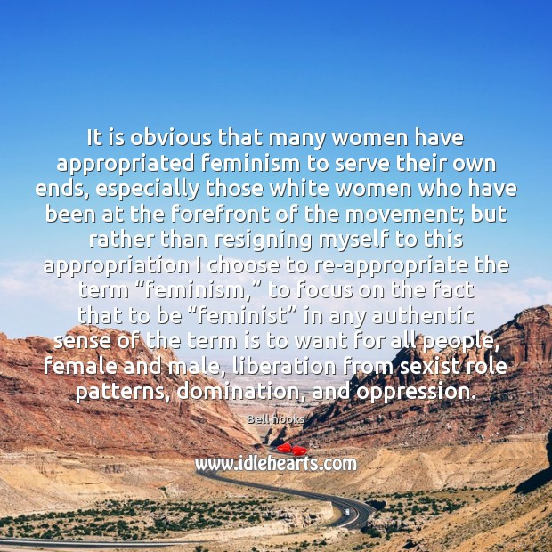Image, It is obvious that many women have appropriated feminism to serve their