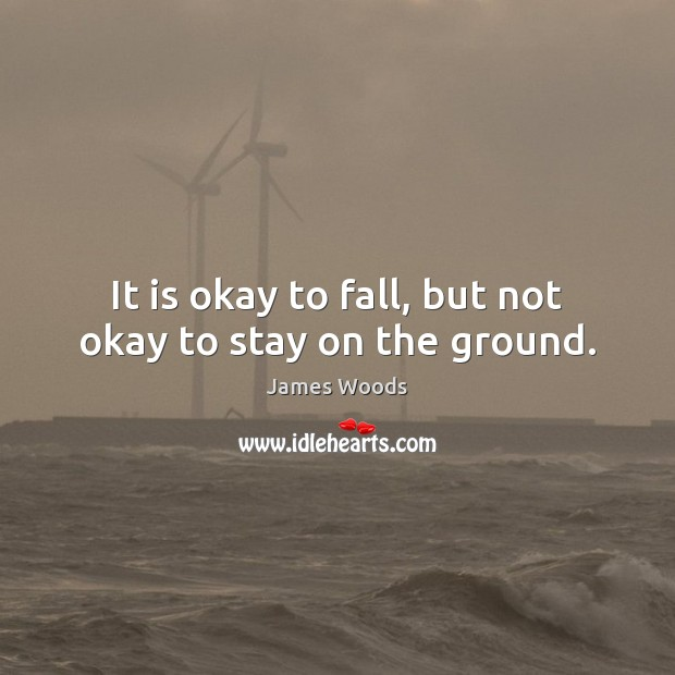 It is okay to fall, but not okay to stay on the ground. James Woods Picture Quote