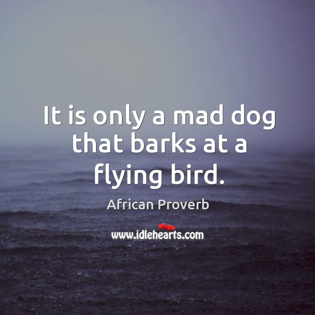 Image, It is only a mad dog that barks at a flying bird.