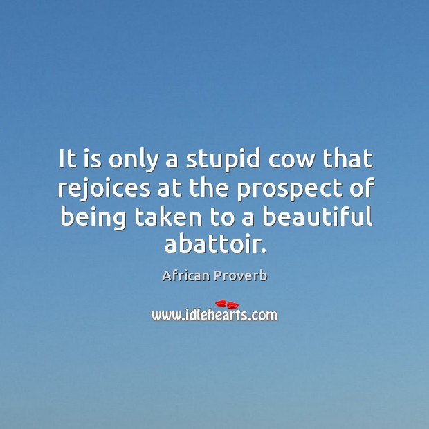 Image, It is only a stupid cow that rejoices at the prospect of being