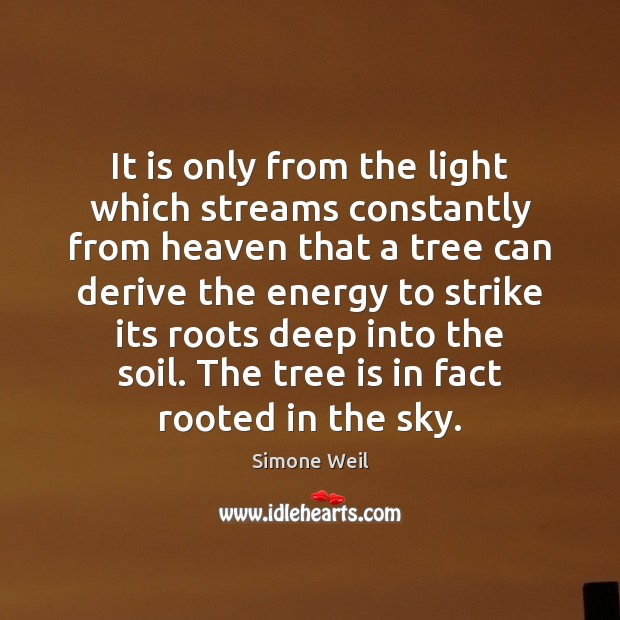 It is only from the light which streams constantly from heaven that Simone Weil Picture Quote