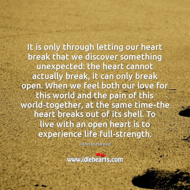 Image, It is only through letting our heart break that we discover something