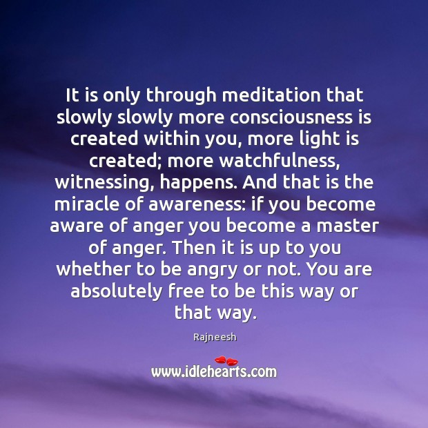 Image, It is only through meditation that slowly slowly more consciousness is created