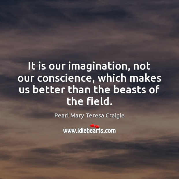 Image, It is our imagination, not our conscience, which makes us better than