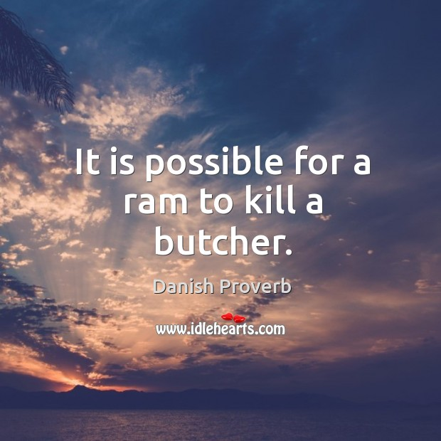 Image, It is possible for a ram to kill a butcher.