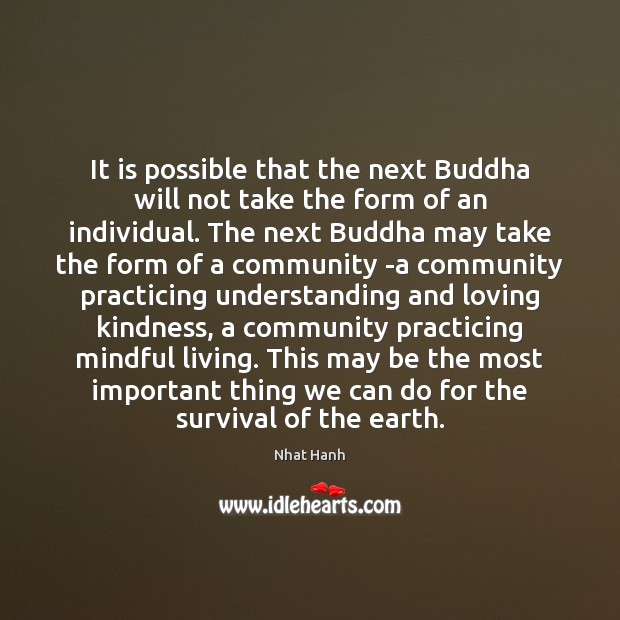 It is possible that the next Buddha will not take the form Image