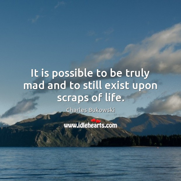 It is possible to be truly mad and to still exist upon scraps of life. Image