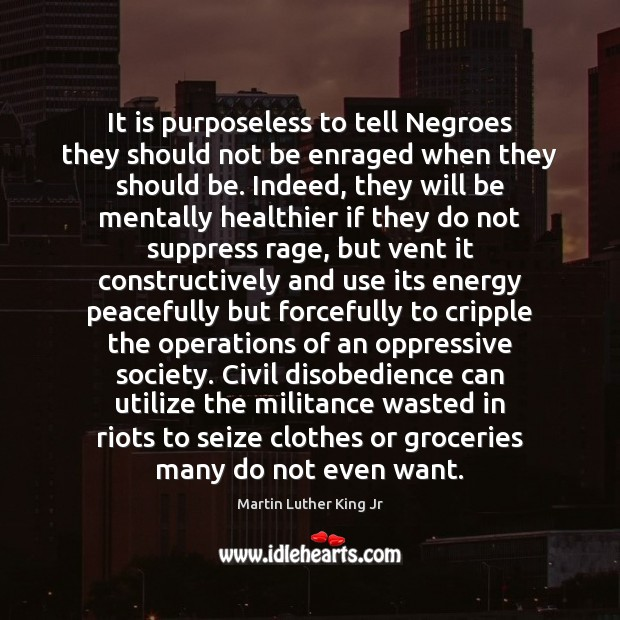 Image, It is purposeless to tell Negroes they should not be enraged when