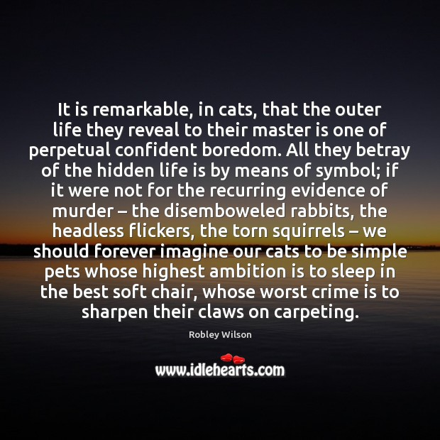 It is remarkable, in cats, that the outer life they reveal to Image