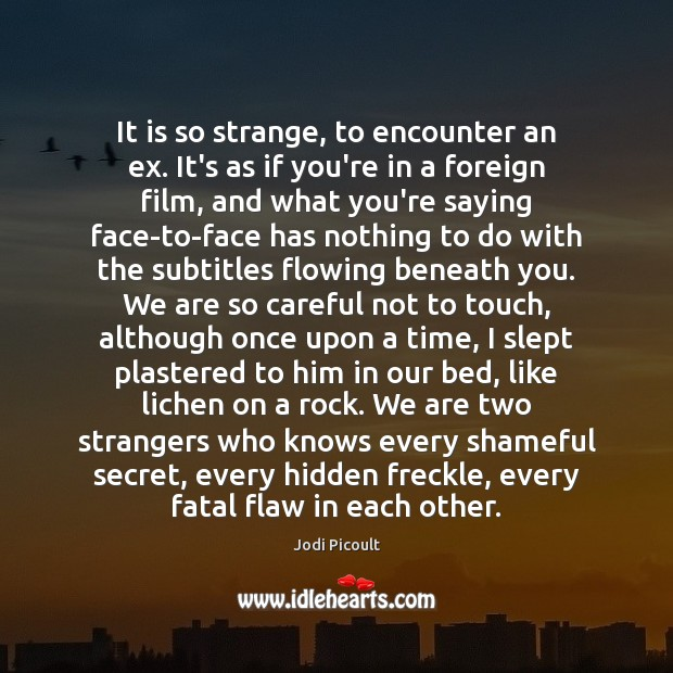 It is so strange, to encounter an ex. It's as if you're Jodi Picoult Picture Quote