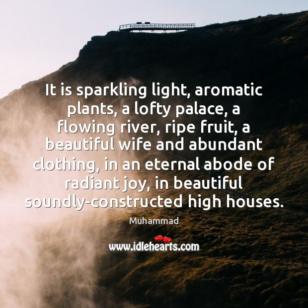 It is sparkling light, aromatic plants, a lofty palace, a flowing river, Muhammad Picture Quote