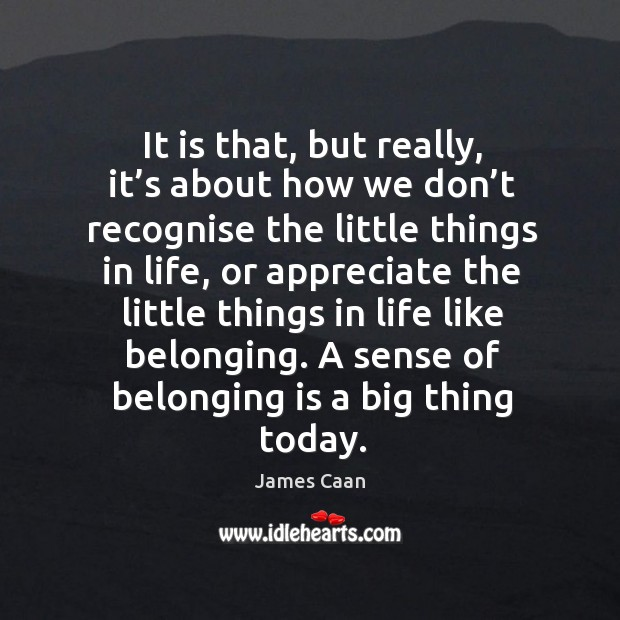 It is that, but really, it's about how we don't recognise the little things in life James Caan Picture Quote