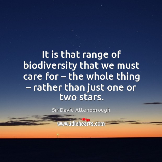 It is that range of biodiversity that we must care for – the whole thing – rather than just one or two stars. Image