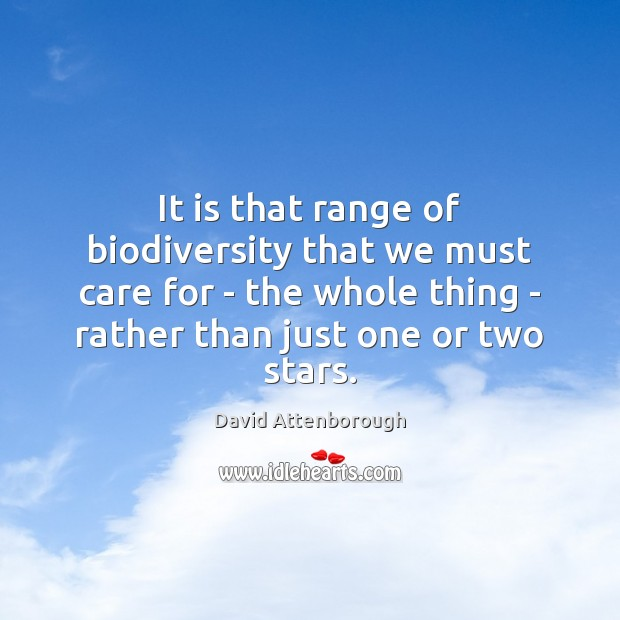 It is that range of biodiversity that we must care for – Image
