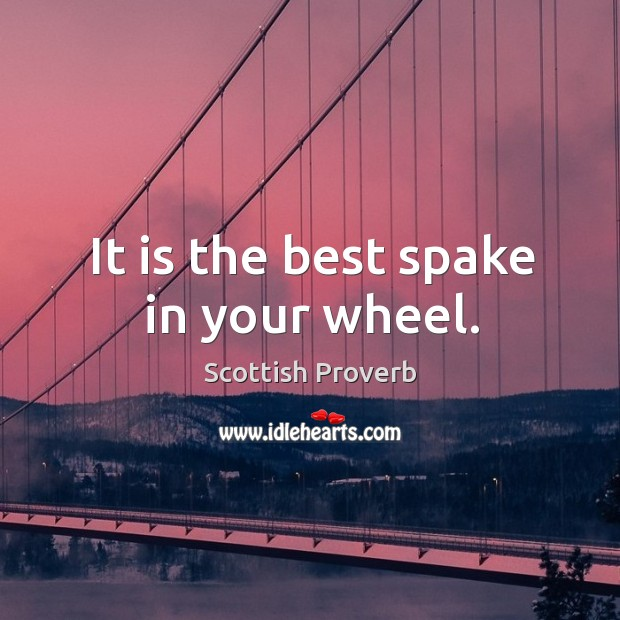 Image, It is the best spake in your wheel.