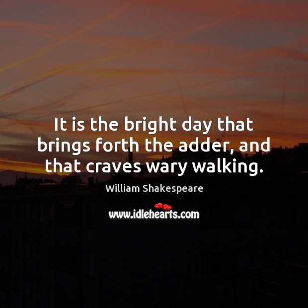 Image, It is the bright day that brings forth the adder, and that craves wary walking.